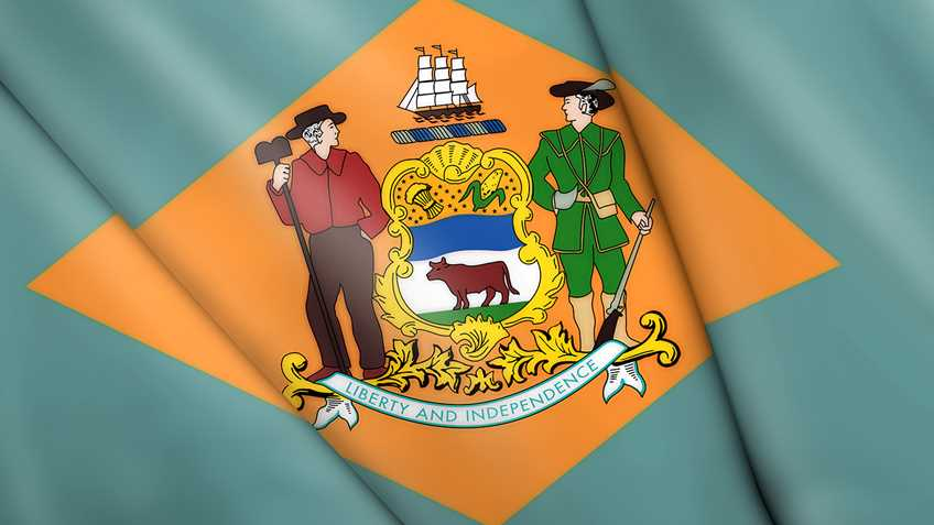 Delaware: Anti-Gun Legislation Passes out of House