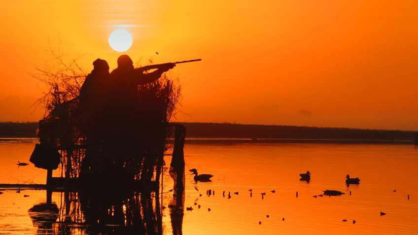 NRA Endorses Pro-Gun and Pro-Hunting Statewide Ballot Amendments in Alabama