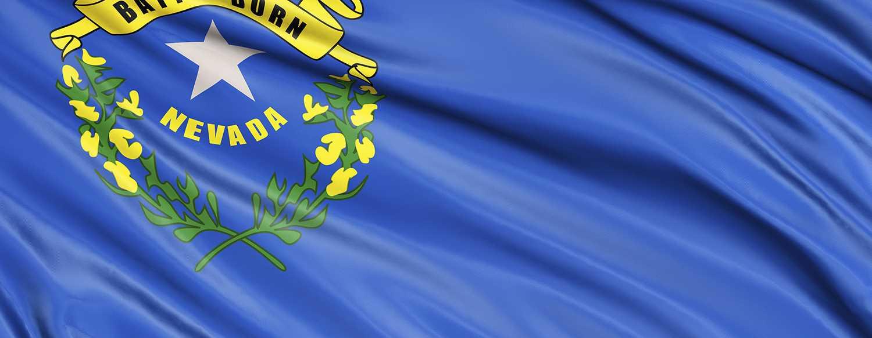 NRA-ILA   Nevada Update: Gun Control Hearing Agenda Posted, But The Bill Remains Secret