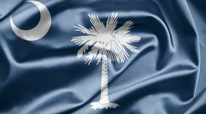 South Carolina: Senate Subcommittee to Hear Multiple Gun Bills Tomorrow