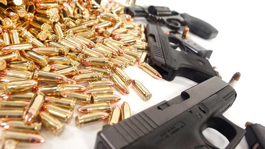 "South Carolina: Please Attend the Third Special ""Gun Issues"" Committee Hearing This Week"
