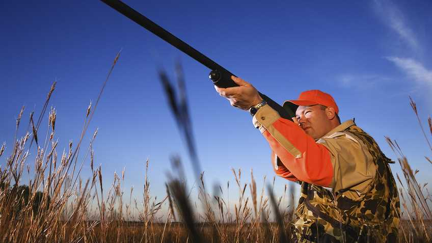 North Carolina: Pro-Hunting Bill in Committee this Week