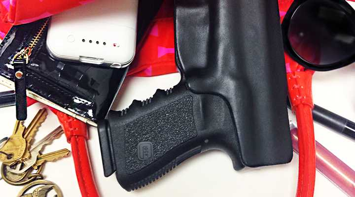 Grace V. DC Ruling Under Pressure: D.C. Appeals Concealed Carry Order, Gets Administrative Stay