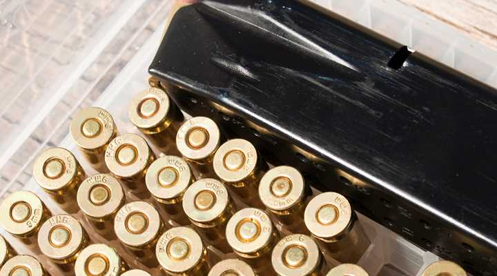 Washington: Mag Ban & Other Bills Heading to Senate Floor