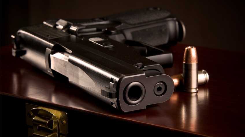 Iowa: Omnibus Pro-Gun Bill Assigned to Senate Committee