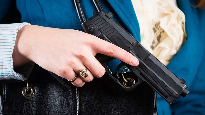 Michigan: Constitutional/Permitless Carry Bills Pass House