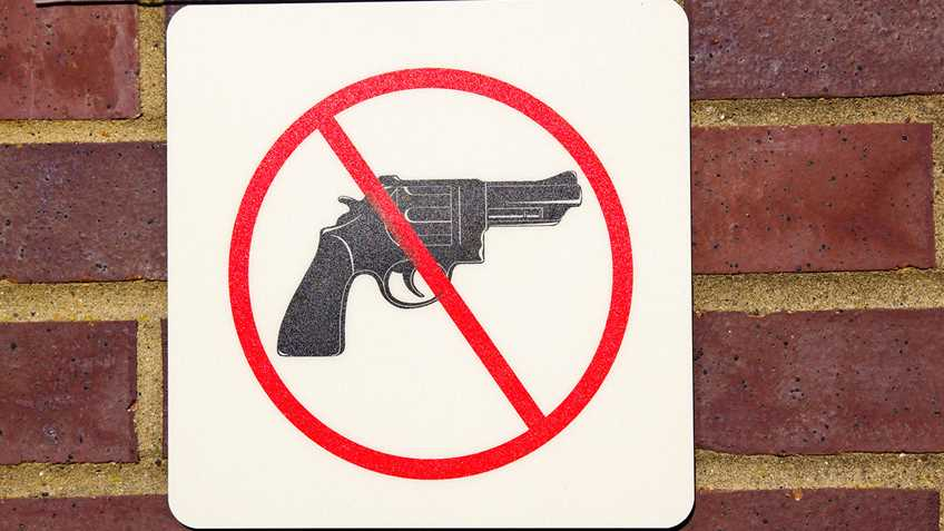 Washington: Lieutenant Governor Habib Announces Gun Ban in Senate Galleries