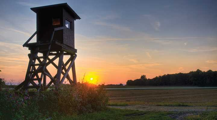 Delaware: Sunday Hunting Legislation Signed into Law