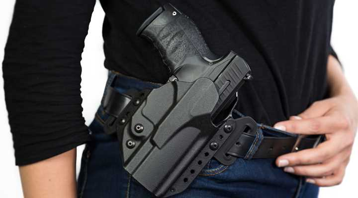Michigan: Judge Strikes Down Open Carry Ban At Polls