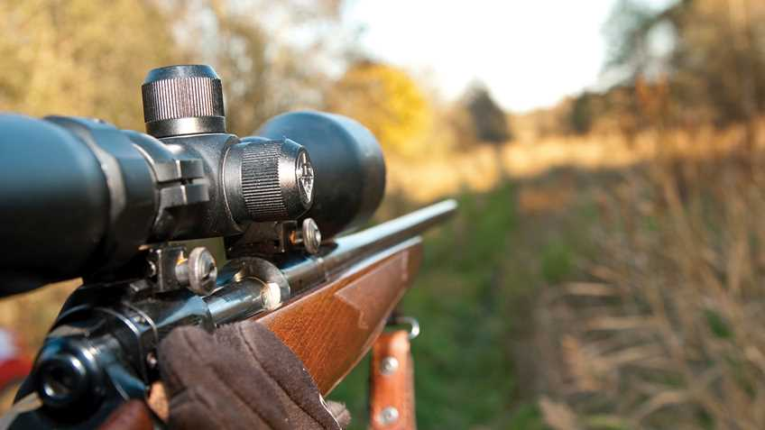 Indiana: Rifle Hunting Bill Passes Senate