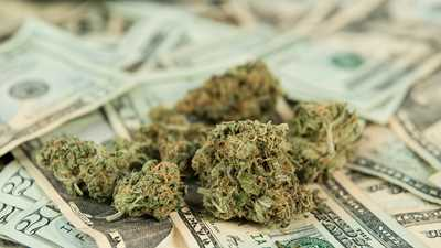 Federal Regulators Breathe Life into Marijuana Businesses Even as They Seek to Choke Out FFLs