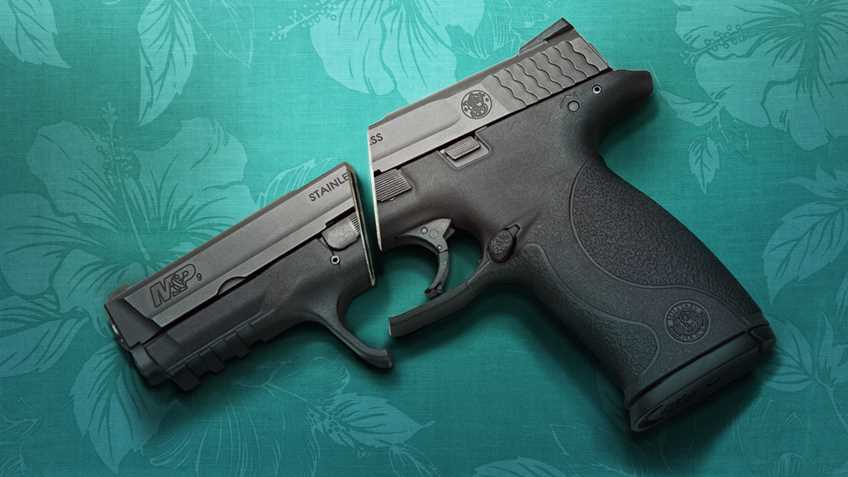 Hawaii: Gun Owners May Be Monitored More Closely Than Criminals Under New Law