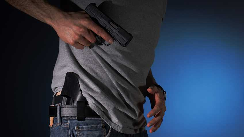 Michigan: Senate to Vote on Self-Defense Bills