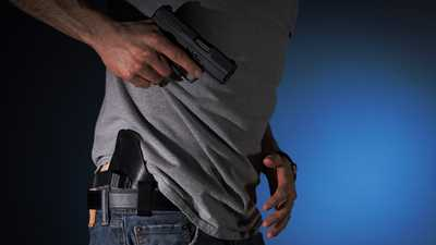 Michigan: Constitutional/Permitless Carry Package Introduced