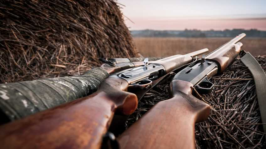 West Virginia: Gov. Justice Signs Sunday Hunting Bill