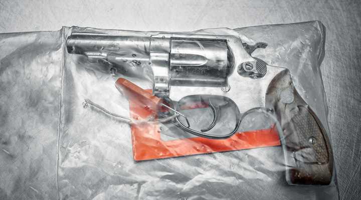 Firearm Registration + Bureaucratic Incompetence = Seizure of Innocent Veteran's Guns in New York