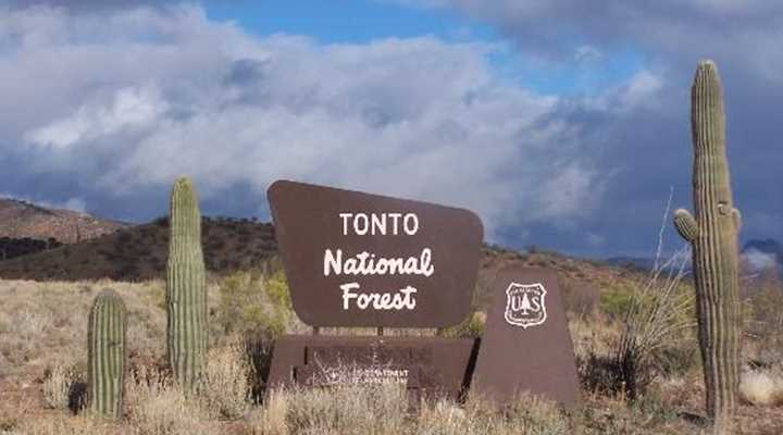 Arizona: Tonto National Forest to hold public meetings on preliminary proposed management plan