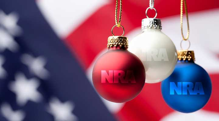 Survey: NRA and the Right to Bear Arms Strongly Associated with American Patriotism