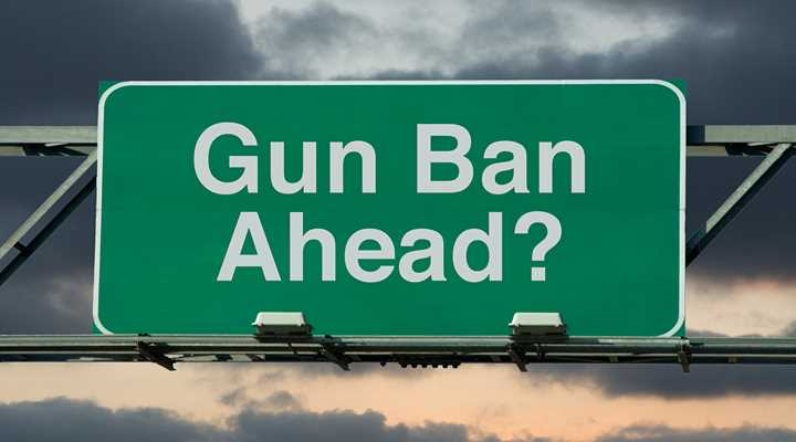 Banning Guns with the Ballot Box