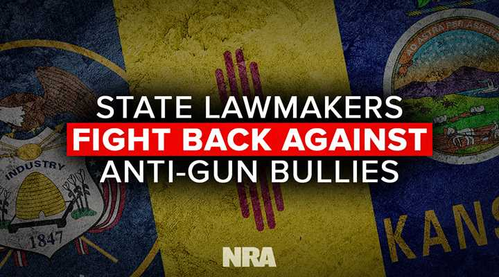 State Lawmakers Fight Back Against Anti-Gun Bullies