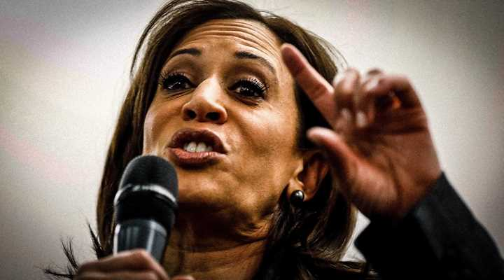 Kamala Harris Calls for Gun Ban, Reveals Logical Weakness of Anti-gun Position