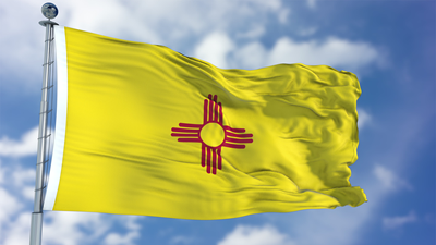 New Mexico's Background Check Law: A Year in Review