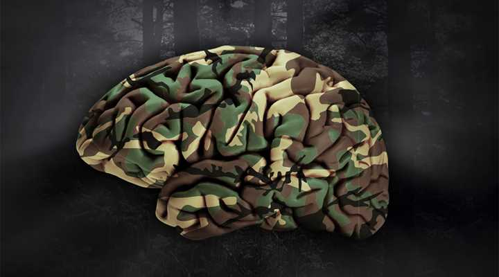 Brain Science Shows How Hunters Win or Lose at Survival
