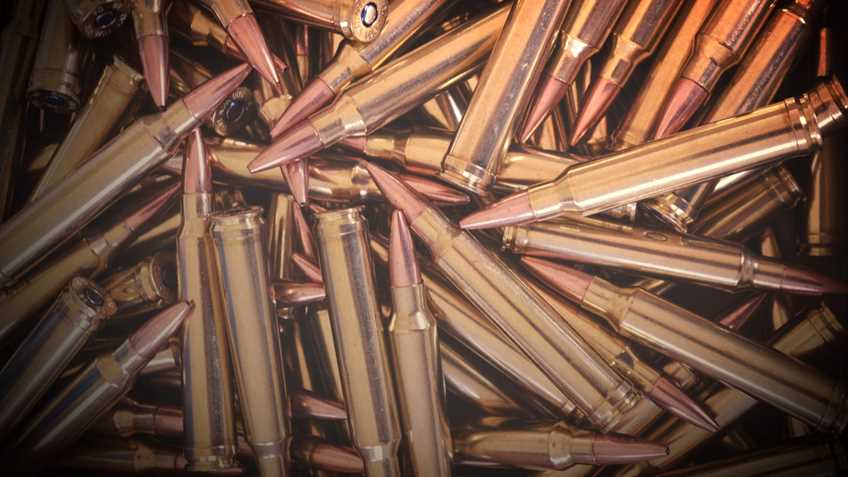 California: Lead Free Ammunition Required for All Hunting as of July 1