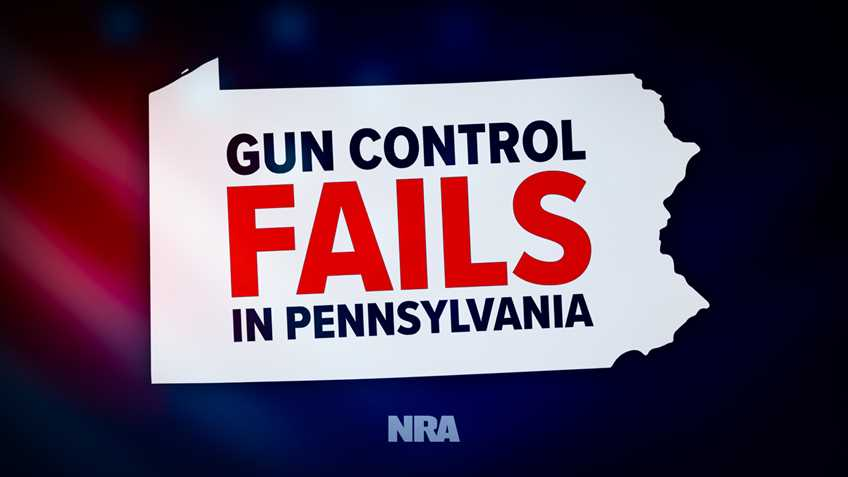 Pennsylvania Court Knocks Out Pittsburgh Gun Control in NRA-Backed Case