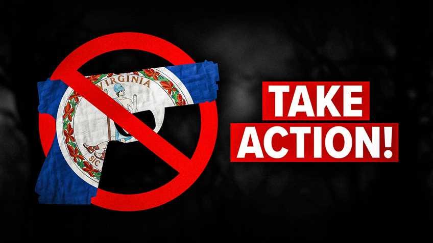Virginia Senate Passes Three Gun Control Bills - Committee Advances a Fourth