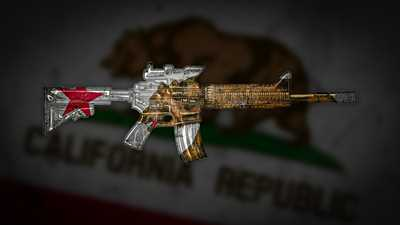 California Gun Rights Lawsuit: Part II