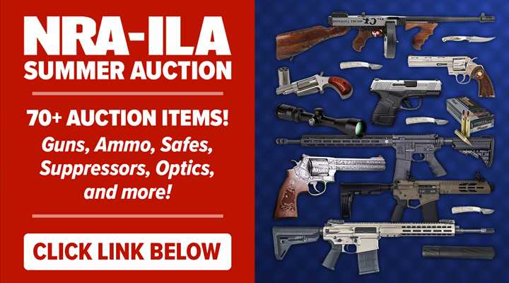 2020 NRA-ILA Summer Auction