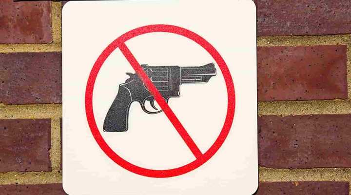 Tell Loudoun County: No Gun Ban