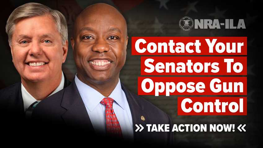 Take Action – Contact Senators Graham and Scott Today!